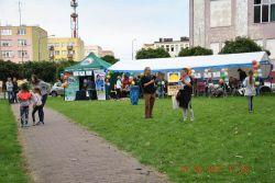 Festiwal_Organizacji_Pozarządowych_07